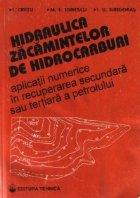 Hidraulica zacamintelor de hidrocarburi - Aplicatii numerice in recuperarea secundara sau tertiara a petrolului
