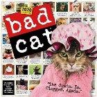 2020 Bad Cat Wall Calendar