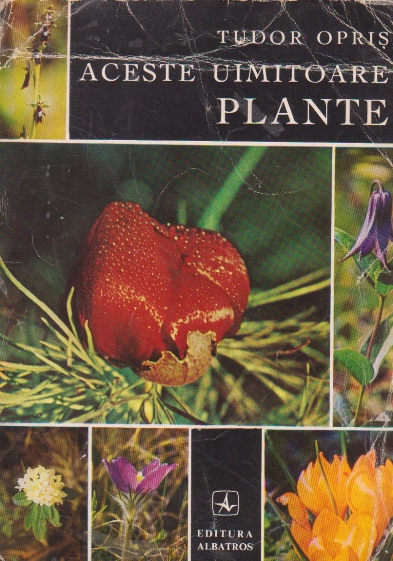Aceste uimitoare plante