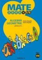 ALGEBRA GEOMETRIE CLASA VIII PARTEA