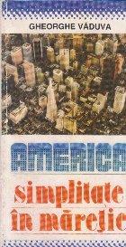 America - simplitate in maretie