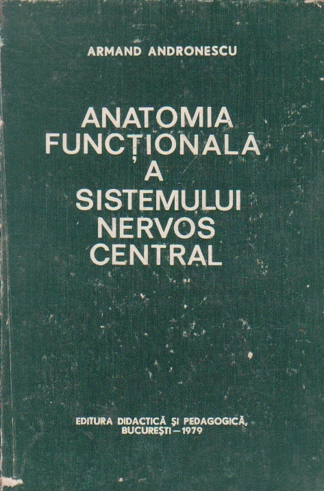 Anatomia functionala a sistemului nervos central