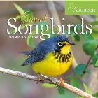 Audubon Sweet Songbirds Mini Wall
