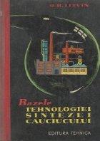 Bazele tehnologiei sintezei cauciucului (Traducere din limba rusa)