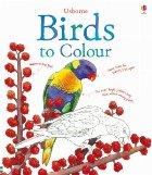 Birds to colour