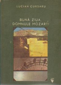 Buna ziua, Domnule Mozart - Jurnalul de vacanta al lui Cosmin
