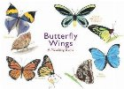 Butterfly Wings:A Matching Game