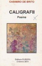 Caligrafii - poeme
