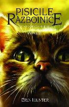 Cartea 11 Pisicile Războinice. Amurg
