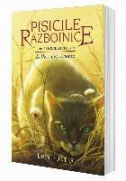 Cartea Pisicile Războinice Patrulea Ucenic