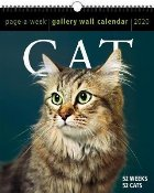 Cat Page Week Gallery Wall