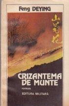 Crizantema de munte