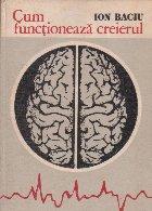 Cum functioneaza creierul