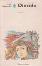 Dincolo (roman)