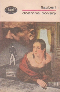 Doamna Bovary (Moravuri de provincie)