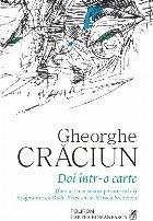 Doi într-o carte (fără a-l mai socoti pe autorul ei). Fragmente cu Radu Petrescu şi Mircea Nedelciu