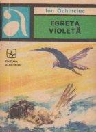 Egreta violeta