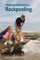Essential Guide to Rockpooling