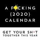F*cking 2020 Calendar