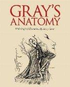 Grays Anatomy