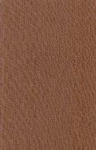 Istoria literaturii romane - Compendiu