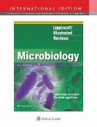 Lippincott (R) Illustrated Reviews: Microbiology