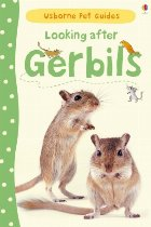 Looking after gerbils