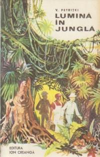 Lumina in jungla