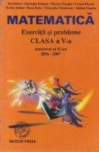 Matematica - Exercitii si probleme pentru clasa a V-a, Semestrul al II-lea, 2006-2007