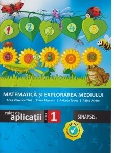 Matematica si explorarea mediului. Caiet de aplicatii. Clasa I