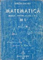 Matematica - Manual pentru clasa a X-a, Geometrie. Probabilitati. Statistica - Profil M1