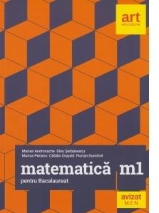 Matematica M1 pentru examenul de Bacalaureat - Filiera teoretica, profilul real, specializarea mate-info. Filierea vocationala, profilul militar, mate-info