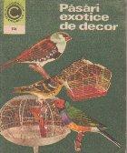 Pasari exotice decor