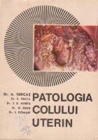 Patologia colului uterin