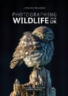 Photographing Wildlife the