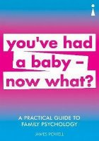 Practical Guide to Family Psychology