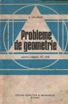 Probleme de geometrie pentru clasele VI - VIII