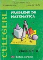 Probleme de matematica, Clasa a V-a
