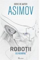Robotii I. Eu, Robotul
