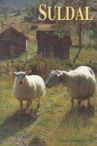 Suldal - Stavanger Turistforenigns Yearbook 1993