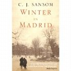 Winter Madrid